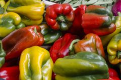 Weekly market in Siena, Tuscany. Organic vegetables peppers at the weekly market in Siena, Tuscany, Italy, Europe Royalty Free Stock Images