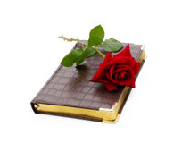 Weekly of synthetic leather and red rose Royalty Free Stock Photo