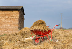 Weelbarrow with animal manure Royalty Free Stock Images
