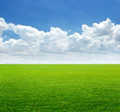 Weelderig grasgebied en blauwe hemel met wolkenachtergrond Royalty-vrije Stock Foto