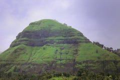 Weelderig groen heuveltje tegen een blauwe hemel royalty-vrije stock afbeelding