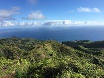Weelderig groen land en mooie blauwe oceaan Stock Foto