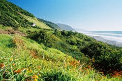 Weelderig kustlandschap Royalty-vrije Stock Foto's