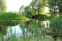 Weelderig landschap Royalty-vrije Stock Afbeeldingen