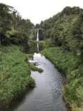 Weelderige groene Watervalstroom royalty-vrije stock fotografie