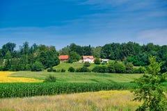 Weelderige landbouwgrond, Oostelijk Slovenië royalty-vrije stock foto