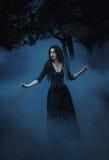 ween ведьма для того чтобы заколдовать Стоковое фото RF