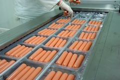 Weenies nell'ordine Immagine Stock