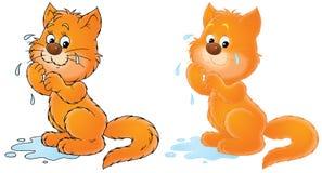 Weeping cat vector illustration