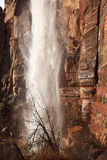 Weeping Rock Waterfall Red Zion Canyon Utah Royalty Free Stock Photo