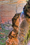 Weeping Rock in Zion Canyon Stock Photography