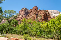 Weeping Rock in the Zion N.P. Royalty Free Stock Photography