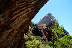 Weeping Rock, Zion National Park, USA Stock Images