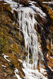 Weeping wall in Smoky Mountains covered in ice Stock Photography