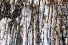 Weeping wall Royalty Free Stock Images