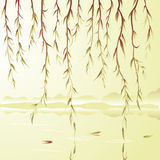 Weeping willow vector illustration