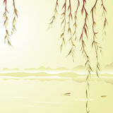Weeping willow above the water Stock Photography