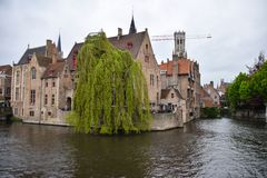 Weeping Willow corner. A weeping willow dips into the water at a photographic corner in Bruges canal system royalty free stock photography