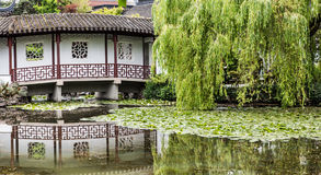 Weeping Willow and Japanese Bridge Royalty Free Stock Image