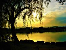 Weeping willow, lake, luminescence, evanescence and colours. Weeping willow, lake, water, sunlight, ray of sun, hills, landscape, view, trees, nature and sky stock photography