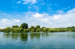 Weeping willow trees. And a pond in the Alexandru Ioan Cuza Park, Bucharest, Romania. Daylight, summer, 2018 royalty free stock photos