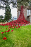 The Weeping Window of poppies. The Weeping Window of remembrance poppies at the Black Watch Museum in Perth Scotland Stock Photos
