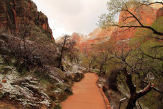 Weeping Window Trail. In Zion National Park, Utah Stock Photography