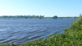 Weergeven aan een rivier met acuaticsinstallaties stock foto