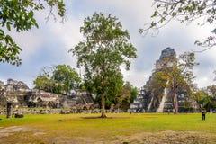 Weergeven bij Tikal-Tempel I van Grand Place van het Park van Tikal Natinal - Guatemala stock foto's