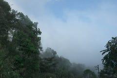 Weergeven blauwe hemel en wolk over groene boom op berg, Thailand Umphang stock foto's