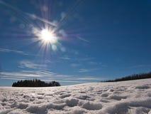 Weergeven in de zon met sneeuw en bomen stock foto's