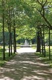 Weergeven door de stegen van Pavlovsky-Park De stad van Pavlovsk royalty-vrije stock afbeelding