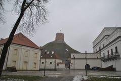 Weergeven op Gediminas-toren op mistige de winterdag royalty-vrije stock afbeeldingen