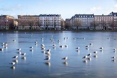Weergeven over de Meren in Kopenhagen, Denemarken stock foto's