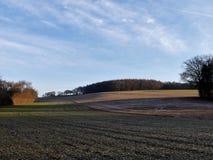 Weergeven over gebied aan Scrubbs-Hout, Sarratt van de Schaakvallei stock foto's