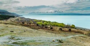 Weergeven over Meer Pukaki, Zuideneiland van Nieuw Zeeland royalty-vrije stock foto