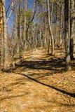 Weergeven van Buck Mountain Trail stock foto's