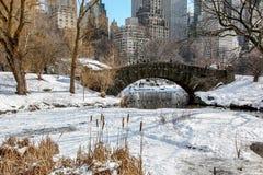 Weergeven van Central Park dichtbij ijsring royalty-vrije stock afbeelding