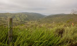 Weergeven van Crystal Cove State Park stock fotografie