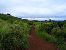 Weergeven van de aard in de Noordwestelijke kustlijn van Maui stock afbeeldingen