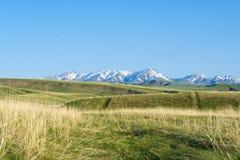 Weergeven van de bergen en de heuvel in de lente Bergen van Kazachstan royalty-vrije stock afbeeldingen
