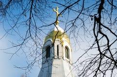 Weergeven van de koepel van de kapel van Ryazan het Kremlin door de takken van bomen stock afbeeldingen