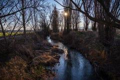 Weergeven van de kust van een rivier in de winter royalty-vrije stock foto's