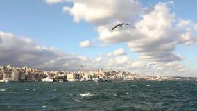 _Weergeven van de stad van Istanboel door de Bosphorus, de zeemeeuw vliegen in de lucht, boot drijven langs stock videobeelden