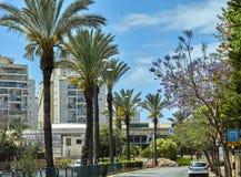 Weergeven van de stadssteeg met palmen tegen de blauwe hemel met wolken stock foto