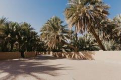 Weergeven van de Unesco aangeworven oase in Al Ain, de V.A.E royalty-vrije stock afbeelding