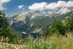 Weergeven van de Vrsic-pas in het Nationale Park van Triglav in Slovenië stock fotografie