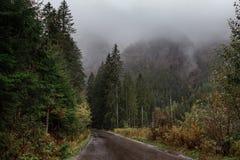 Weergeven van de windende bergweg door de pas, een deel van de bergkronkelweg, in de herfst bewolkt weer stock afbeeldingen