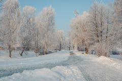 Weergeven van de winterpark met prachtige rijp en ontruimde het lopen stegen stock afbeelding