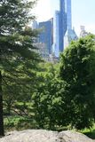 Weergeven van de wolkenkrabbers van het Central Park van New York royalty-vrije stock fotografie